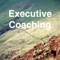Symbol for Service Executive Coaching